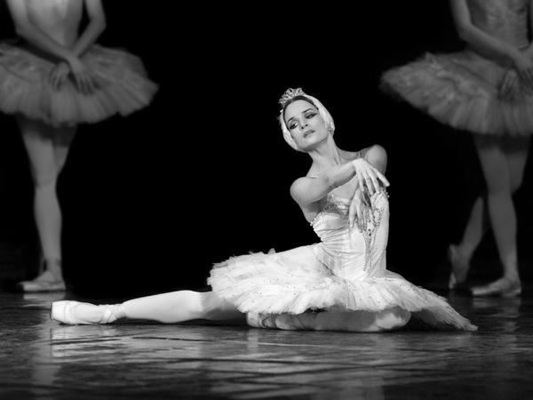 Il cigno bianco odette e il crossover dei cigni di for Immagini di ballerine di danza moderna